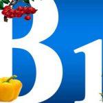 تاثیر مکمل ویتامین B12 بر عملکرد عصبی و شناختی در افراد سالمند