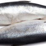 مصرف ماهی و زوال عقل