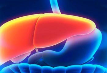 ارتباط چاقی، افزایش دور کمر و دیابت با بروز سرطان کبد