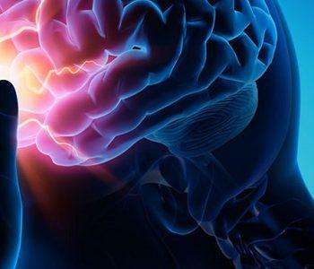 جینکو بیلوبا بر آسیب مغزی ناشی از سکته مغزی موثر است؟