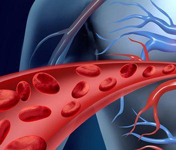 کاهش خطر بیماری قلبی – عروقی با دریافت مکمل ویتامین D