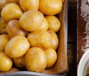 ارتباط کربوهیدرات رژیم غذایی با خطر عود سرطان سر و گردن